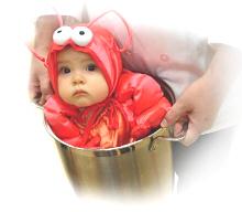 human lobster